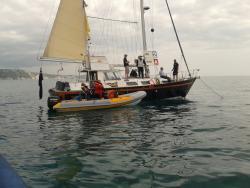 Committee Boat Sorebones