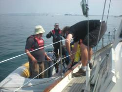 Along side the committee boat